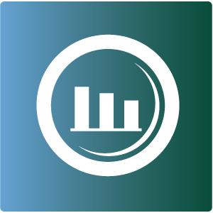 Analyse Veränderungsbedarf, Diagnose, Identifikation von Handlungsfeldern